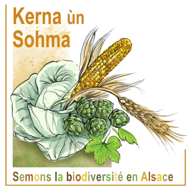 Association Kerna un Sohma